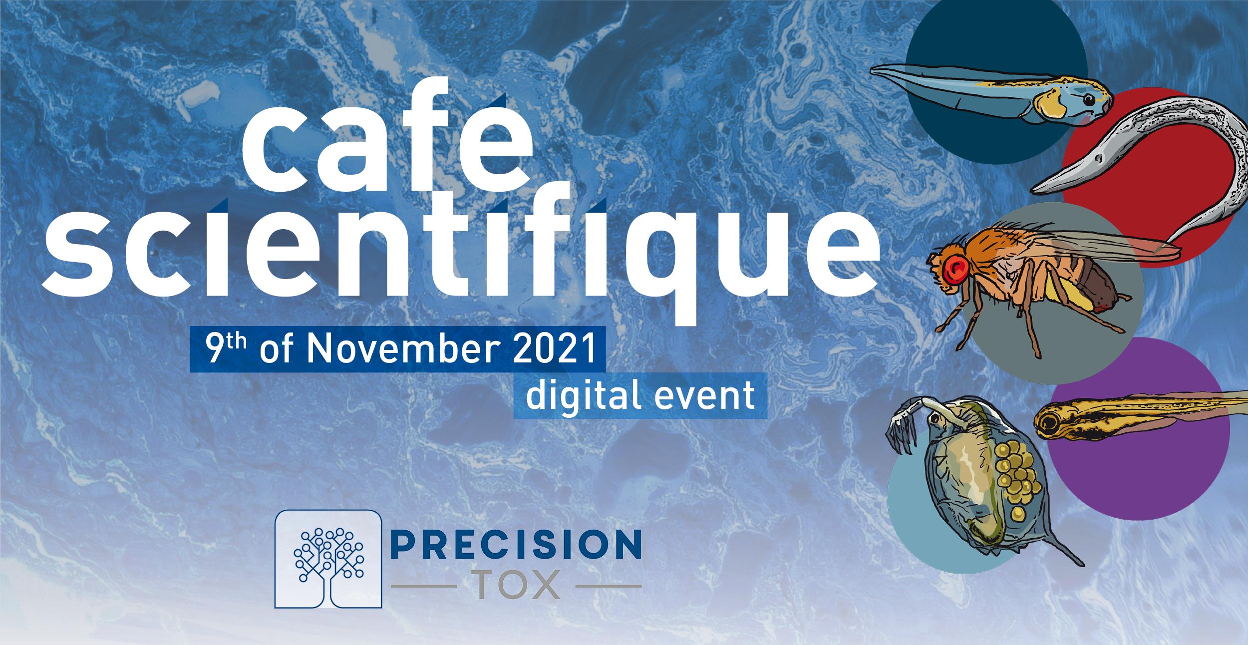 PrecisionTox Café Scientifique – Cell-based bioassays for Precisiontox